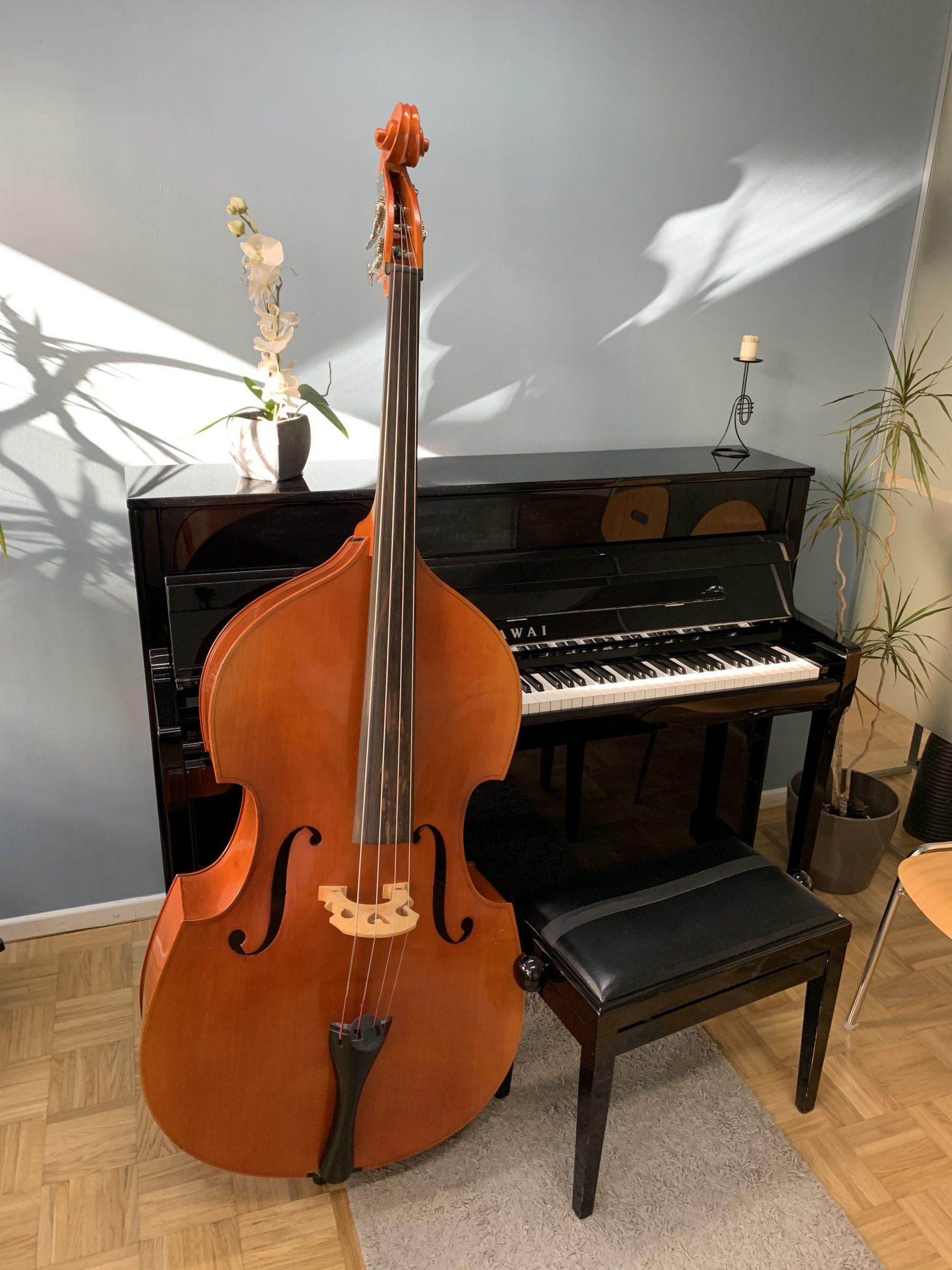 E-Bass & Kontrabassunterricht in München